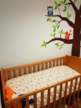 nursery transition